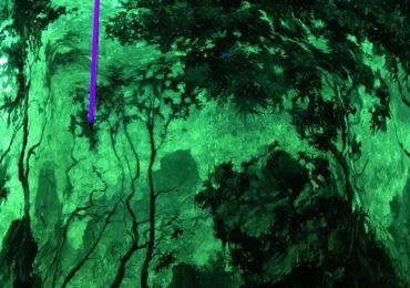 Francesco de Grandi, Wood #7 - Grottesque