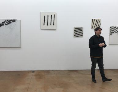 """Commissaire d'exposition Clément Dirié devant la Série """"Zèbres"""""""